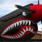 Голубоглазая акула летает в небе голубом.