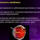 Аветисов С.Э. Хирургия катаракты и глаукомы: есть ли простые решения? Доклад на ВШО-2016. Информационный партнер офтальмологический портал Орган зрения www.organum-visus.com (Рис. 3)