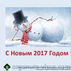 С НАСТУПАЮЩИМ НОВЫМ 2017 ГОДОМ !!! Новости офтальмологии портал Орган зрения organum-visus.ru