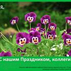 С Днем медицинского работника! Новости офтальмологии портала Орган зрения organum-visus.com