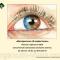 Red Eye. Интересное об известном. Сателлитный симпозиум компании Сентисс 22 апреля, Невские горизонты-2016! Информационный партнер organum-visus.com