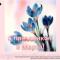 С праздником 8 марта, праздником красоты и весны наших самых дорогих и любимых женщин! Портал Орган зрения organum-visus.ru