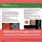 Bulletin! Retinal Disease. Опубликован Бюллетень 12 (3), 2016: лечение окклюзий ретинальных вен! Портал Орган зрения www.organum-visus.com, 4