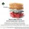 News Retinal Disease. Результаты долгосрочного наблюдения пациентов с ВМД (AMD) на фоне приема лютеинсодержащего препарата. Новости офтальмологии портала Орган зрения organum-visus.ru