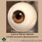 Смотри семинары в Клубе знатоков офтальмологии eye-portal.ruна портале Орган зрения organum-visus.ru