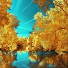 Золотые деревья в голубом небе.